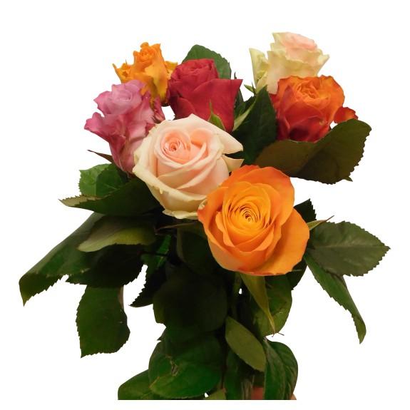 Losse rozen gemengd