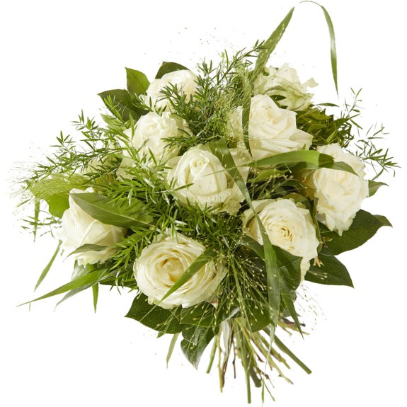 Lieflijk Witte Roos